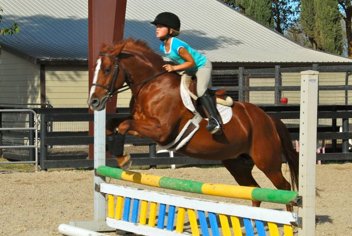 California Riding Academy