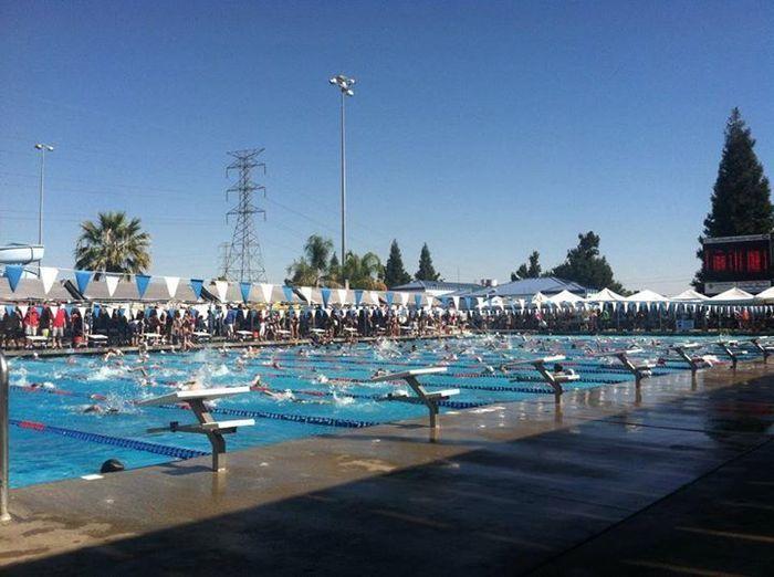Paradise piranhas swim team schedule reviews activityhero - Palo alto ymca swimming pool schedule ...