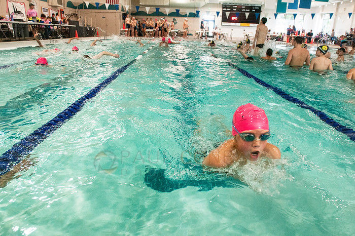 Arne hanna aquatic center schedule reviews activityhero - Palo alto ymca swimming pool schedule ...