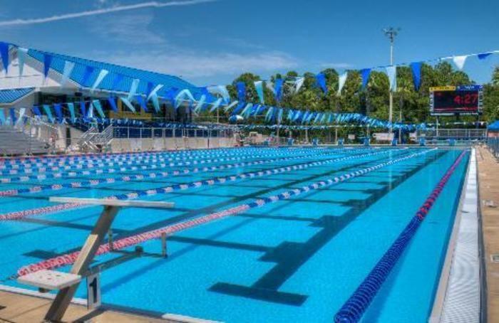 Sarasota ymca sharks schedule reviews activityhero - Palo alto ymca swimming pool schedule ...